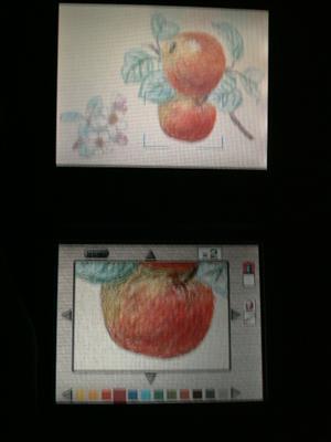 リンゴを塗ってみた