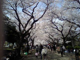 津田山霊園