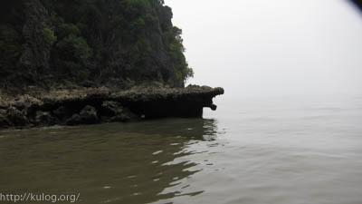 ワニみたいな岩