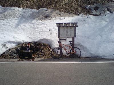 一応自転車も撮ってみた