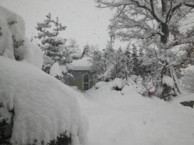 昨日の玄関前