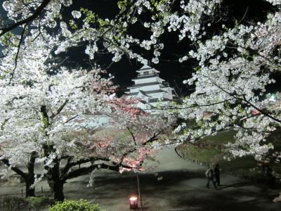 桜に囲まれた鶴ヶ城