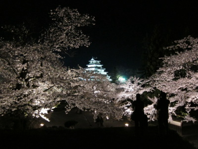 桜に埋もれた鶴ヶ城