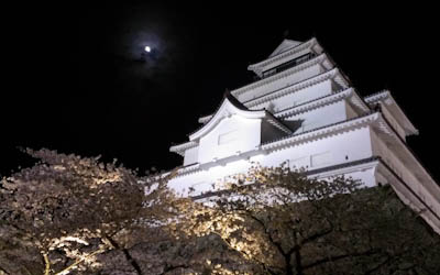 月と桜と城