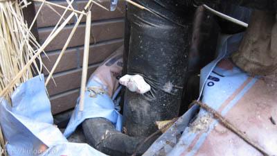 給水元栓を閉める