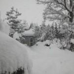 雪がハンパねえ