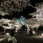 鶴ヶ城で夜桜